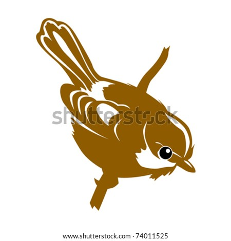 vector silhouette of the bird on white background - stock vector