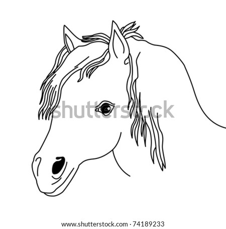 vector silhouette of the head horse on white background