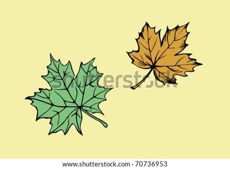 vector silhouette of the maple leaf on yellow background - stock vector