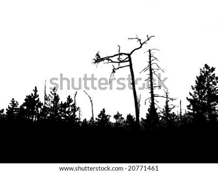 vector silhouette old wood - stock vector