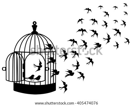Bird Cage Stock Images, Royalty-Free Images & Vectors ...