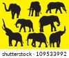 Vector silhouettes  elephants - stock photo