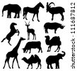 vector silhouettes of elephant, horse, goat, antelope, giraffe, rhinoceros, camel and cow - stock photo