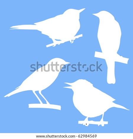 vector silhouettes of the birds sitting on branch tree - stock vector