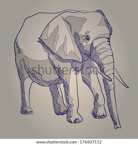 Vector sketch drawing elephant standing - stock vector