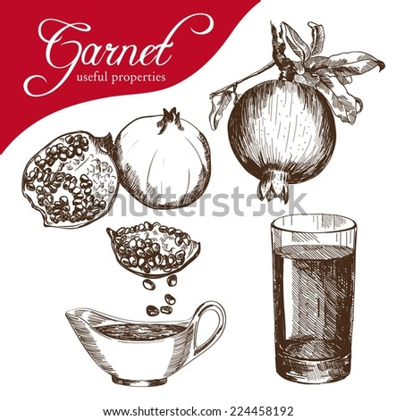 vector sketch of a Pomegranate fruit, made by hand - stock vector