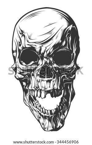 Vector Skull - stock vector