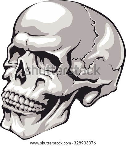 Vector skull tattoo.