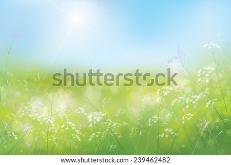 Vector spring floral  background. - stock vector