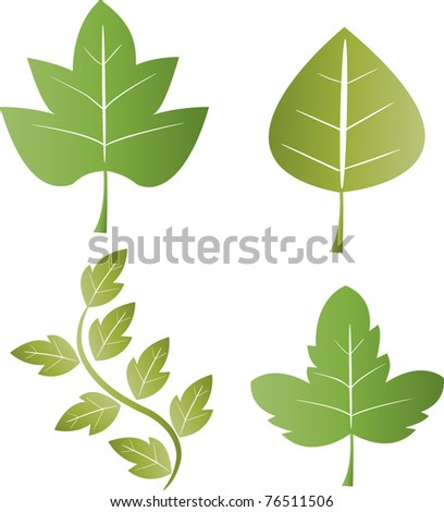vector spring leaves collection