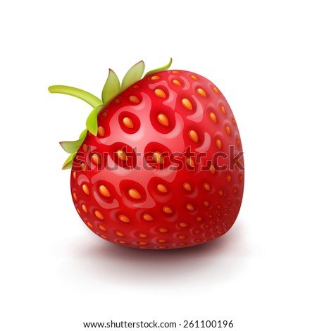 Vector Strawberry Isolated on White Background - stock vector