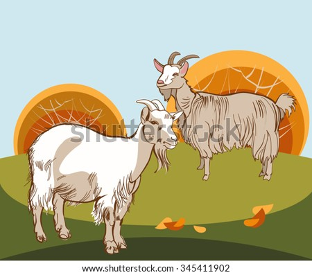 Vector stylized image of two meadows and 