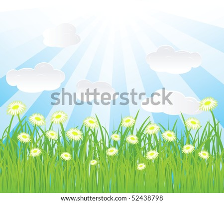 vector summer background.