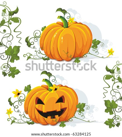Vector tasty and healthy vegetable pumpkin. Classical natural illustration. - stock vector