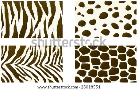 Vector textures of wild animals - stock vector