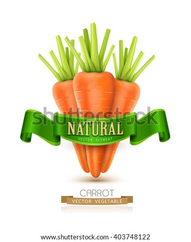 vector three carrots isolated on white background with green ribbon - stock vector