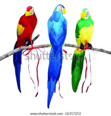 vector. three color parrots sitting on branch - stock vector