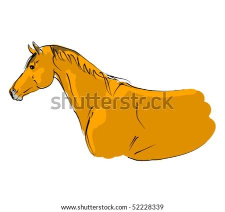 vector trakehner horse - stock vector
