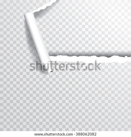 vector transparent ripped corner of paper, layered and editable - stock vector