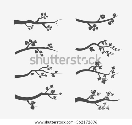branch stock images royaltyfree images amp vectors
