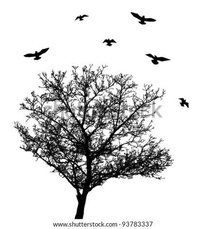 vector tree silhouette with birds - stock vector