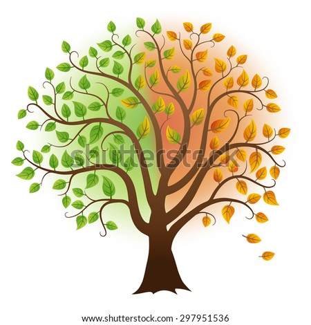 Vector tree with green and yellow leaves from summer to autumn