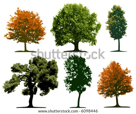 Vector trees - stock vector