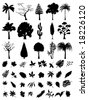 vector trees and leaf collection - stock vector
