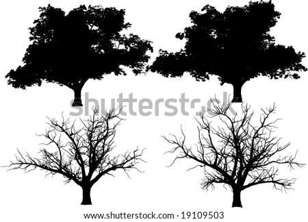 vector trees (oak)  + fall tree - stock vector