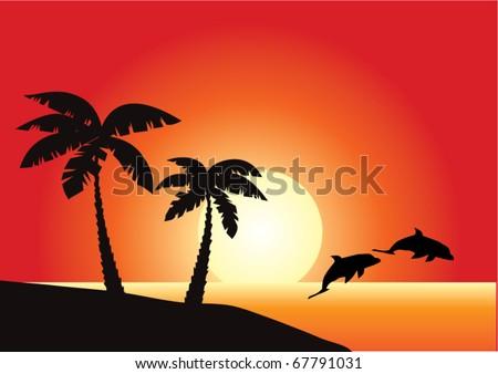 vector tropical beach with dolphins - stock vector