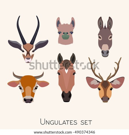 Vector ungulates cloven hoofed animals head set. Lama, deer, antelope, donkey, horse cow bull  illustration isolated. Poster, banner, print, advertisement, web design element object.
