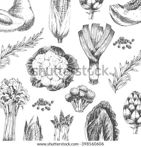 vector vegetable hand drawn collection - cabbage, asparagus, pumpkin, broccoli, leek, artichoke, avocado, corn - stock vector