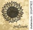 vector vintage floral summer background with sunflower - stock vector