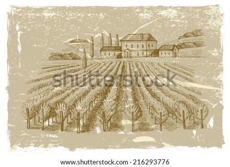 vector vintage hand drawn illustration of wineyard - stock vector