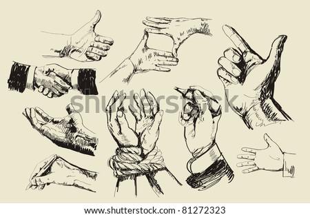 vector vintage hand drawn of hands - stock vector