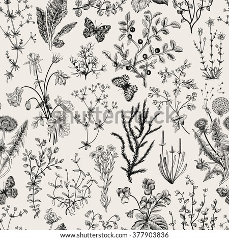 Vector vintage seamless floral pattern. Herbs and wild flowers. Botanical Illustration engraving style. Black and white. - stock vector