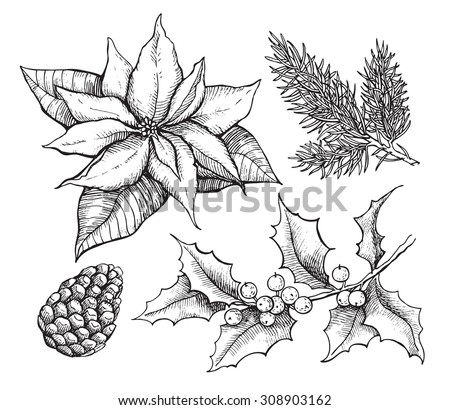 Vector vintage set of hand drawn, tradition Christmas decoration plants. Great for invitation and greeting cards - stock vector
