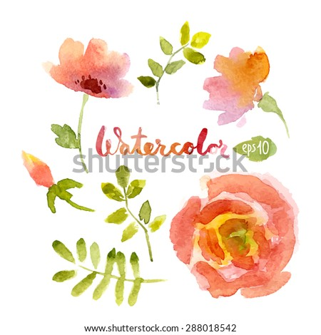 Vector watercolor botanical elements set. Vector leaves and flowers. Floral vector elements. - stock vector