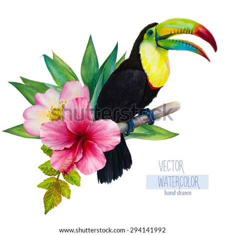 Vector watercolor hand-drawn illustration of a sitting on a branch rainbow toucan, hibiscus, palm tree, rose and green leaves. Isolated image on a white background. Tropical element - stock vector