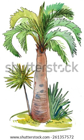 vector watercolor illustration of coconut palm trees on small desert island