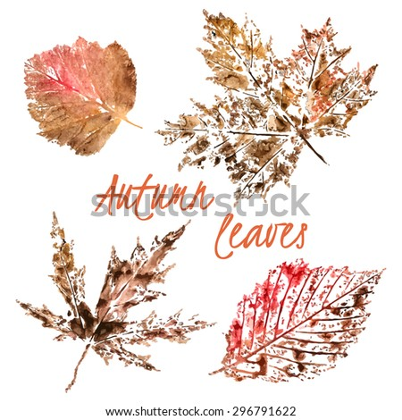 Vector watercolor imprint set of autumn leaves of maple, birch and other on white background - stock vector