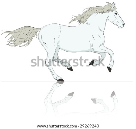 vector white horse run gallop