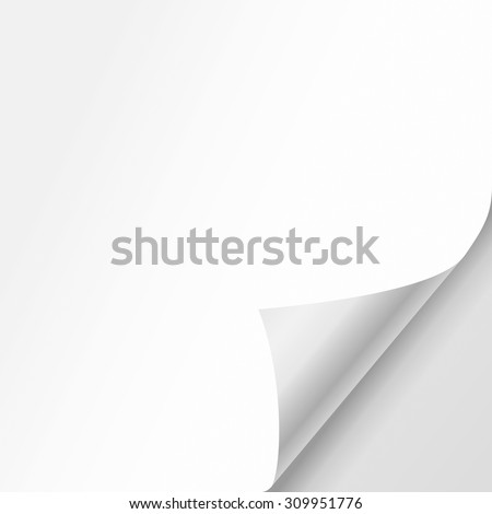 Vector white sheet of paper with realistic curled corner. - stock vector