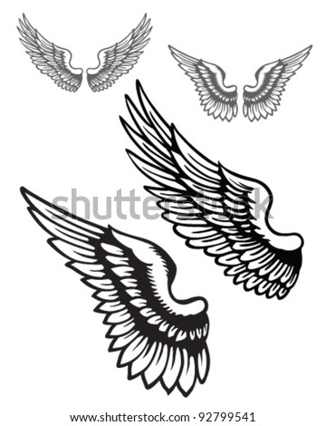 Vector wings set