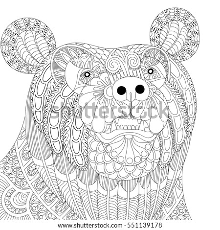 vector zentangle bear head for adult anti stress coloring pages book animal face for