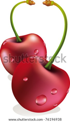 vectorial couple of cherries isolated on white - stock vector