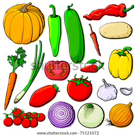 Vegetable set without gradients. Each in separated layer, vector illustration - stock vector