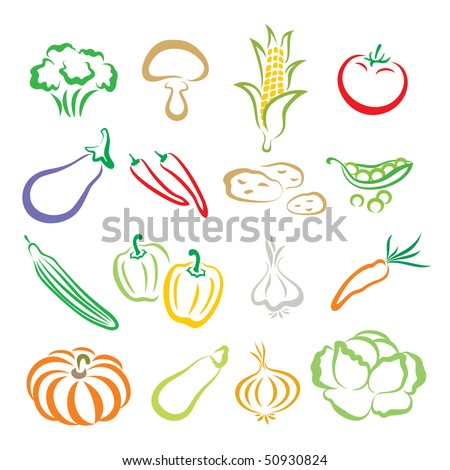 Vegetables - a broccoli, a mushroom, a corn, a tomato, a eggplant, chili peppers, potatoes, a green pea, a cucumber, peppers, a garlic, a carrot, a pumpkin, a marrow, an onion, a cabbage. - stock vector