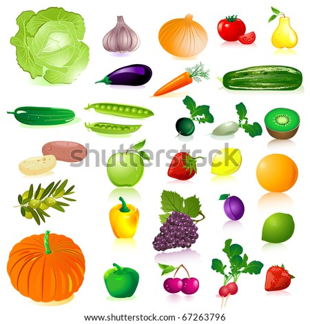 Vegetables and fruit - stock vector