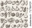 vegetables - doodles - stock